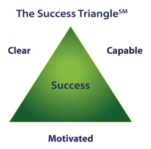 The Success Triangle, performance,